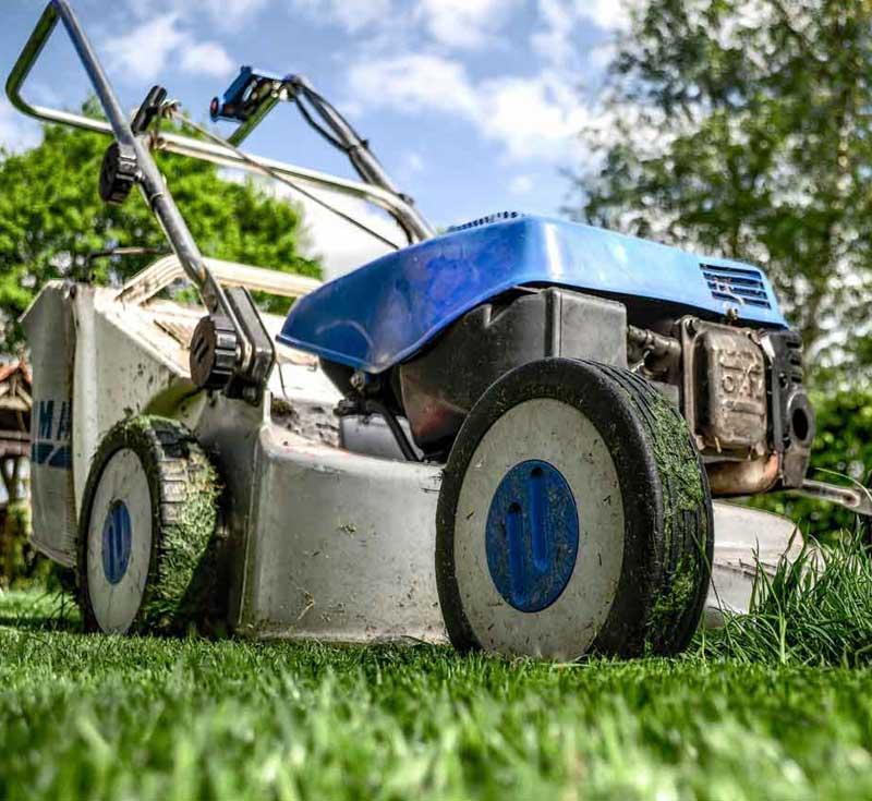 Service de jardinage à domicile